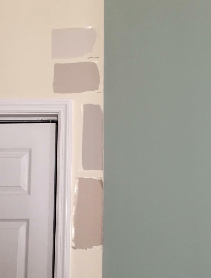Paint sample, paint