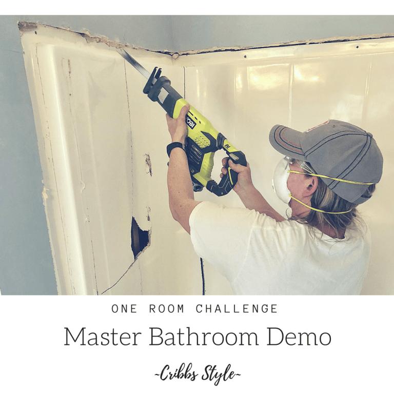 One Room Challenge- Master Bathroom Demo