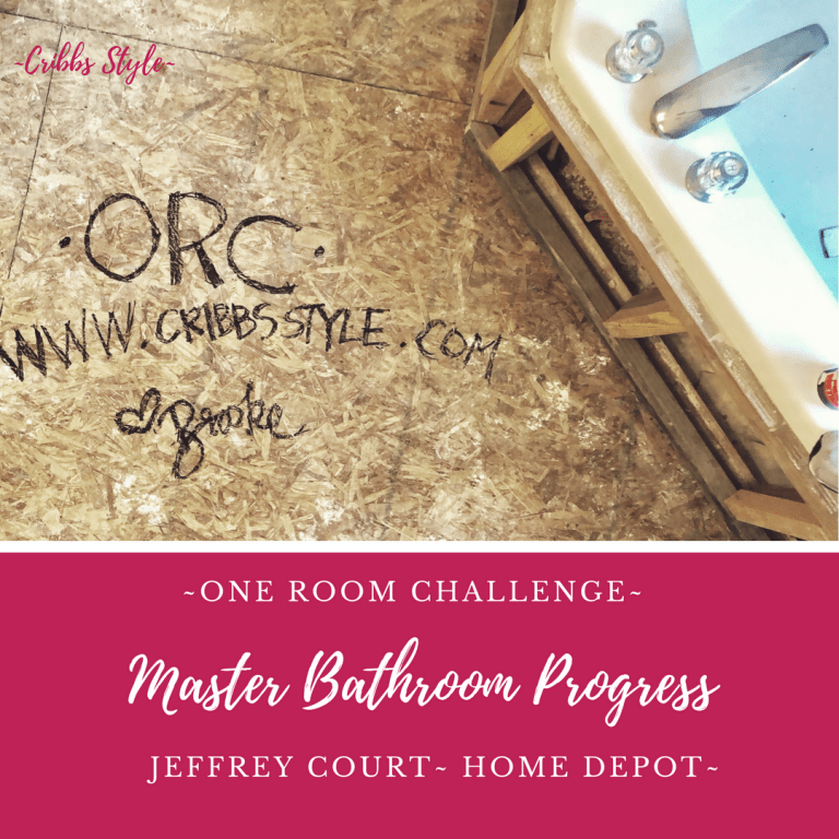 One Room Challenge – Master Bathroom Progress
