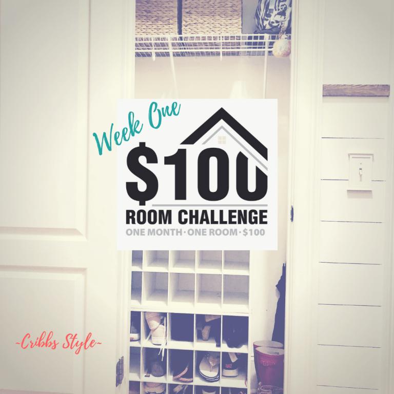 $100 Room Challenge- Hall Closet on a Budget Week 1