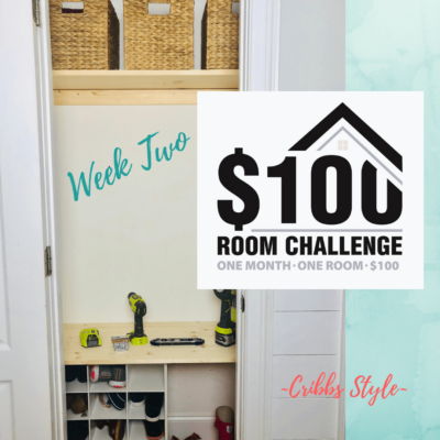 $100 Room Challenge- Hall Closet on a Budget Week 2