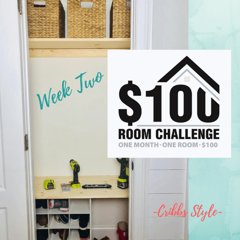 $100 Room Challenge- Hall Closet on a Budget Week 2